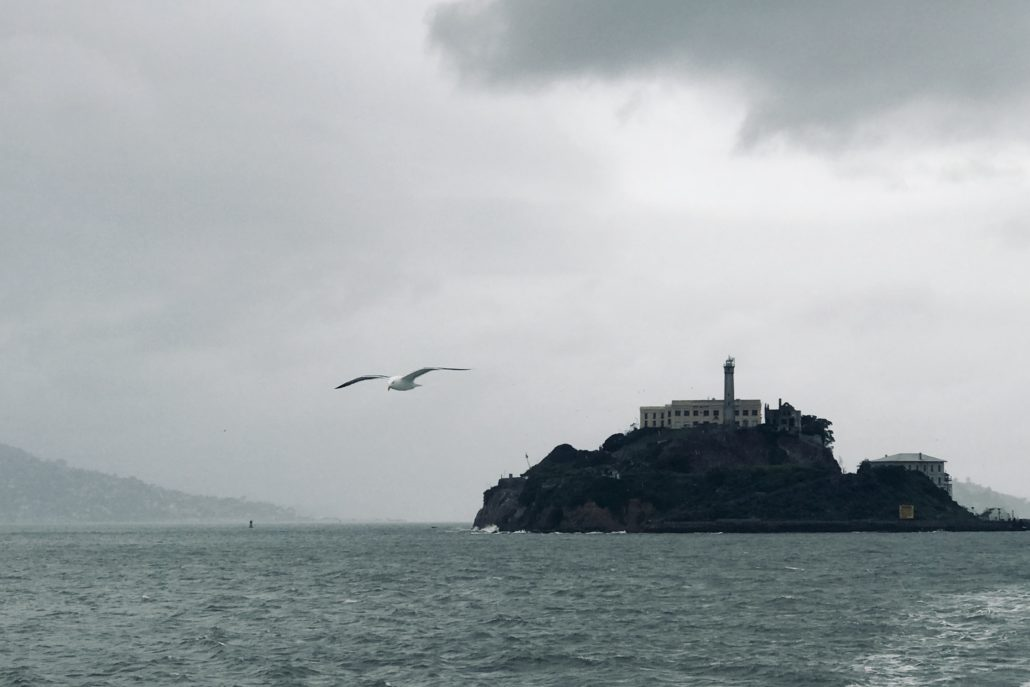 The seagulls, water, waves, and the Island of Alcatraz on a grey day, taken from a distance.